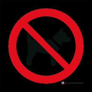 Vietato l'accesso ai cani - Bordo Macchina