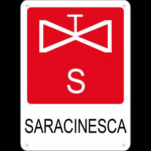 Saracinesca verticale